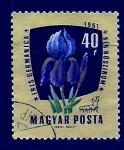 Stamps France -  Iris Germanica