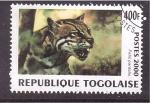 Sellos de Africa - Togo -  serie- felinos