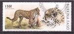 Stamps Burkina Faso -  serie- Felinos