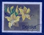 Sellos del Mundo : Europa : Polonia : Rosas