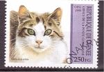 Sellos de Africa - Guinea -  serie- gatos