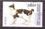 Stamps Guinea -  serie- Gatos