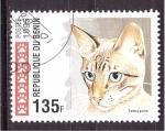 Sellos de Africa - Benin -  serie- gatos