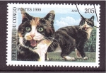 Stamps Republic of the Congo -  serie- Gatos