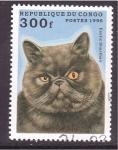 Sellos de Africa - República del Congo -  serie- gatos