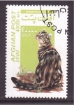 Stamps : Asia : Afghanistan :  serie- Gatos