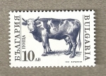 Sellos de Europa - Bulgaria -  Vaca