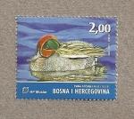 Sellos de Europa - Bosnia Herzegovina -  Aves del valle del Neretva