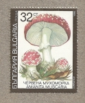 Stamps Europe - Bulgaria -  Seta Amanita muscaria