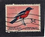 Stamps South Africa -  aves