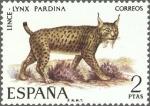 Stamps Europe - Spain -  ESPAÑA 1971 2037 Sello Nuevo Fauna Hispanica Lince Lynx Pardina