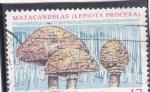 Stamps : Europe : Spain :  SETAS- MATACANDELAS (30)
