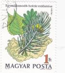 Stamps Hungary -  UN MILLON DE HECTAREAS DE BOSQUE