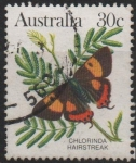 Sellos del Mundo : Oceania : Australia : MARIPOSAS.  CHLORINDA  HAIRSTREAK.