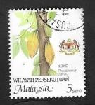 de Asia - Malasia -  Koko, theobroma cacao