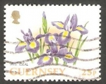 Stamps : Europe : United_Kingdom :  Guernsey - 642 - Iris ideal