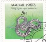 de Europa - Hungría -  VIBORA