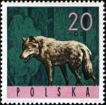 de Europa - Polonia -  Animales