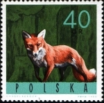 Stamps Poland -  Animales