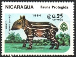 Sellos de America - Nicaragua -  FAUNA  PROTEGIDA  DANTO  JOVEN  SOBRE  CESPED