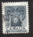 Sellos del Mundo : America : Canadá : Semana Nacional de la Vida Silvestre de 1953