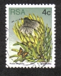 Stamps South Africa -  Sugarbushes