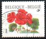 Sellos de Europa - Bélgica -  FLOR  DE  GERANIO