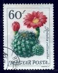 Stamps Hungary -  Rebulia Calliantha