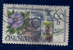 sello : Europa : Checoslovaquia : Rosa Canina