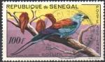 Sellos de Africa - Senegal -  ABYSSINIAN  ROLLER