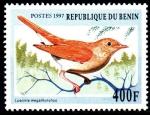Stamps : Africa : Benin :  LUSCINIA  MEGARHYNCHOS