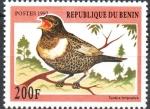 Stamps : Africa : Benin :  TURDUS  TORQUATUS