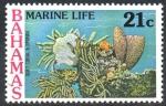 Stamps : America : Bahamas :  CORAL  SUAVE  Y  ESPONJA