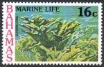 Stamps : America : Bahamas :  CORAL  CUERNO  DE  ALCE