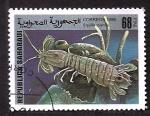 Sellos del Mundo : Africa : Marruecos : Squilla mantis