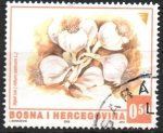 Stamps : Europe : Bosnia_Herzegovina :  AJOS