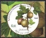 Sellos de Europa - Croacia -  GROSELLA