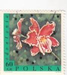 Sellos de Europa - Polonia -  FLORES- ODONTORIO