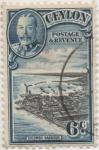 Stamps Sri Lanka -  Ceylan_UK Y & T Nº 240