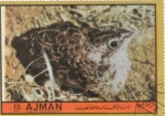 Stamps : Asia : United_Arab_Emirates :  AVE- POLLUELO