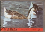 Stamps : Asia : United_Arab_Emirates :  AVE- PATOS