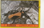 Stamps : Asia : United_Arab_Emirates :  INSECTOS