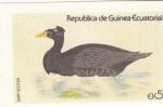 Sellos de Africa - Guinea Ecuatorial -  AVE- PATO