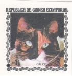 Sellos de Africa - Guinea Ecuatorial -  GATO- CALICO