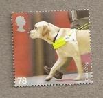 Stamps United Kingdom -  Razas Perros