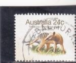 Sellos de Oceania - Australia -  TIGRE DE TASMANIA