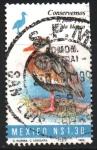 Stamps : America : Mexico :  CONSERVEMOS  EL  PATO  PIJIJI  DE  ALA  BLANCA