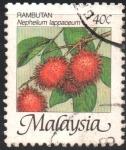 Stamps : Asia : Malaysia :  FRUTOS.  NEPHELIUM  LAPPACEUM.