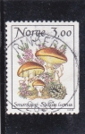 Sellos de Europa - Noruega -  SETAS