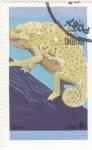 Stamps : Asia : Oman :  CAMALEÓN